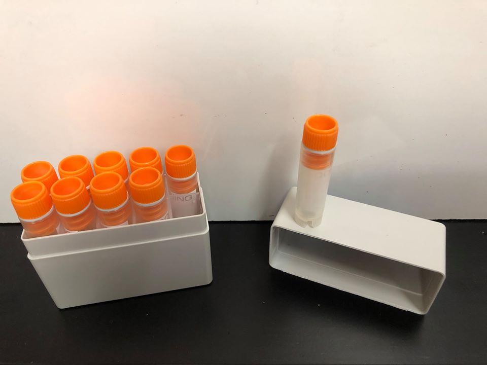 VEG-301-RP-50 | Recombinant Human VEGF-165 Protein